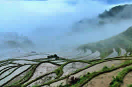 One Day Yunhe Rice Terrace & Village Discovery Tour from Hangzhou