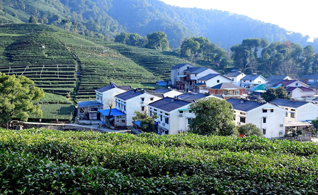 Meijiawu_tea_culture_village.jpg