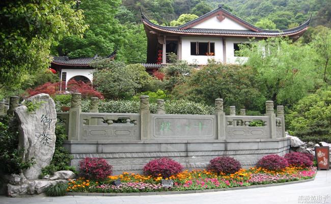 Longjing_Imperial_Tea_Garden_副本.jpg