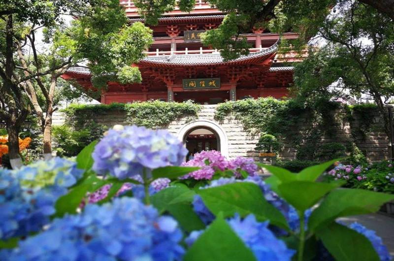 Hangzhou Wu Hill Flower Show,hangzhou garden flower show,hangzhou day tour