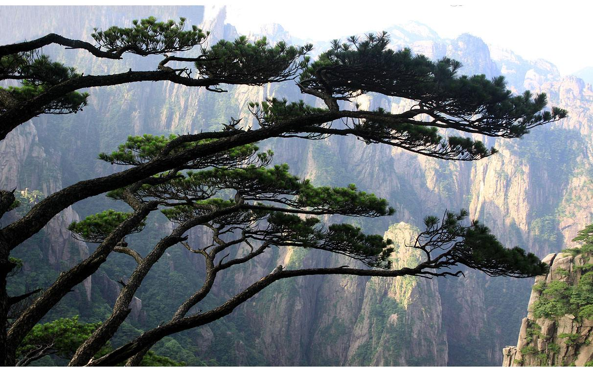 3-Day_Beijing_Huangshan_Sightseeing_Tour_with_Round-trip_High-speed_Train_4.jpg