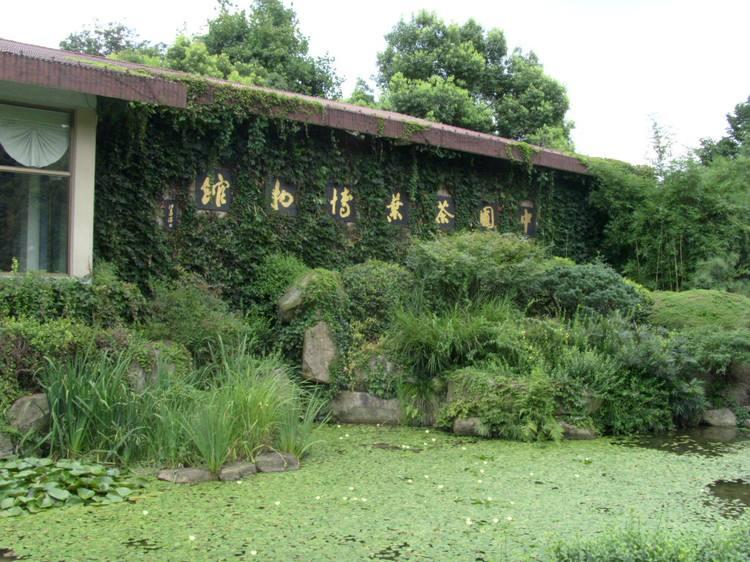 Tea_Museum_1.jpg